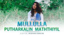முள்ளுள்ள புதர்களின் மத்தியில்-Mullulla Putharkalin Maththiyil